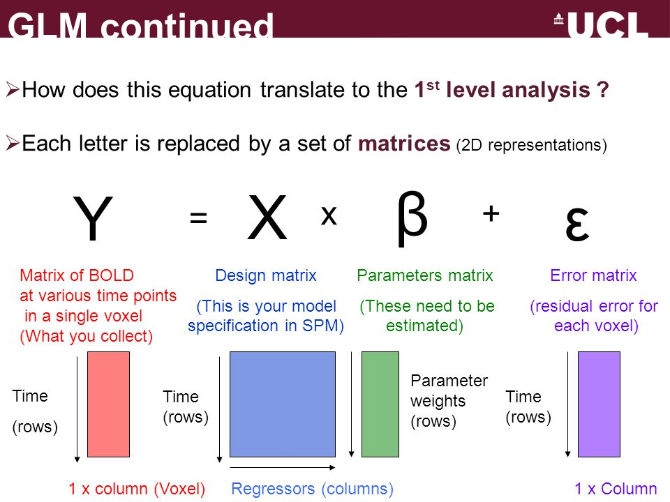 GLM continued How does this equation translate to the 1st level analysis Each letter is replaced by a set of matrices (2D representations)