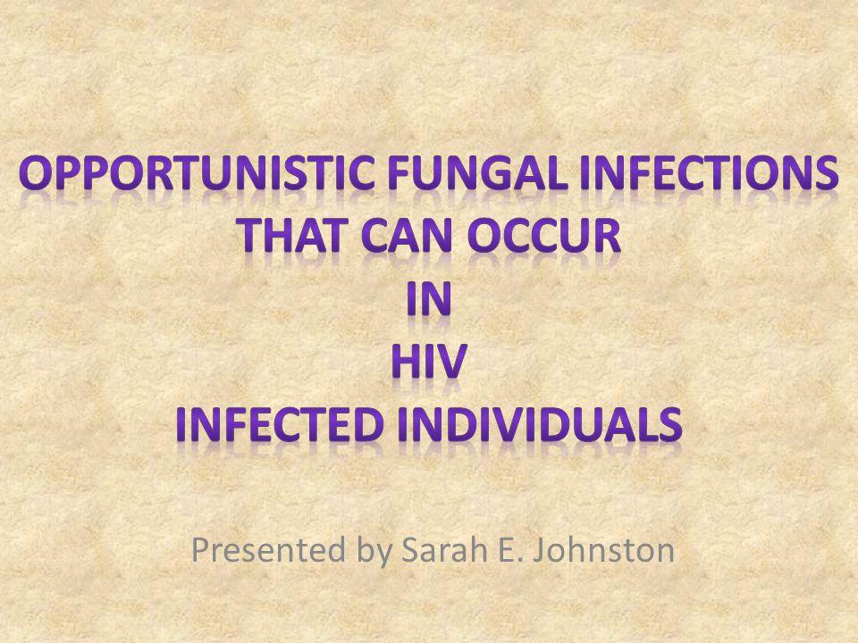 Presented by Sarah E. Johnston