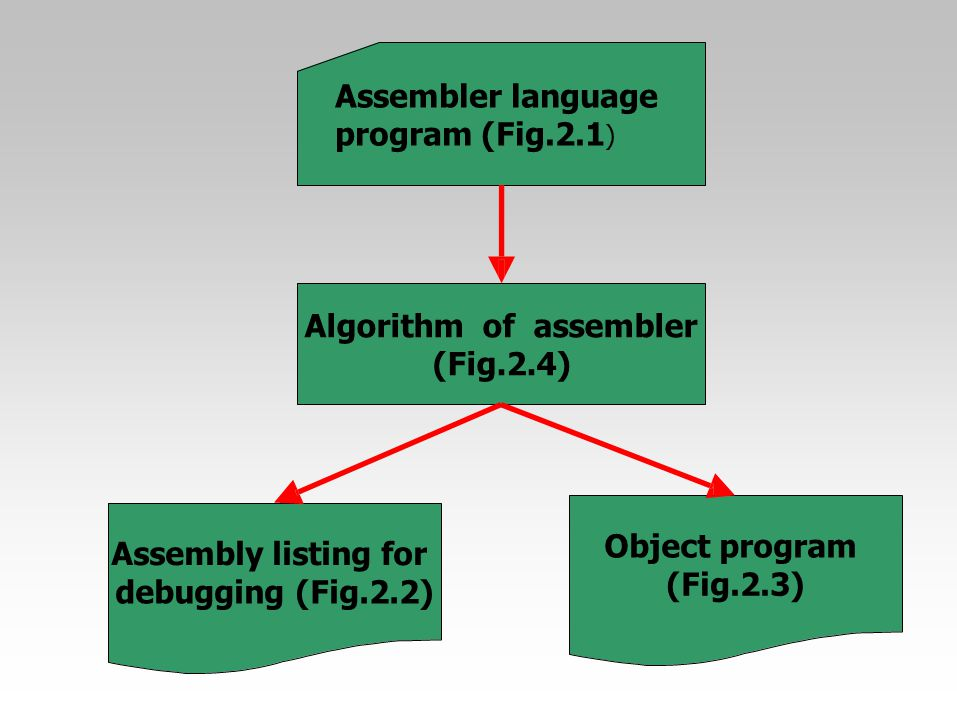Assembler language program (Fig.2.1)