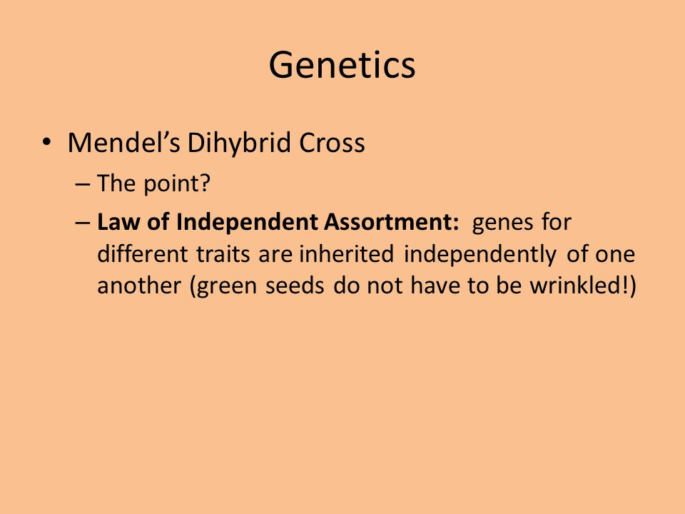 Genetics Mendel's Dihybrid Cross The point