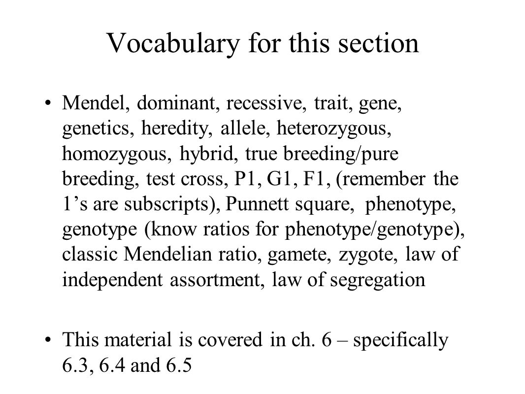 Vocabulary for this section