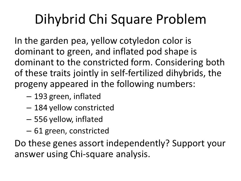 Dihybrid Chi Square Problem