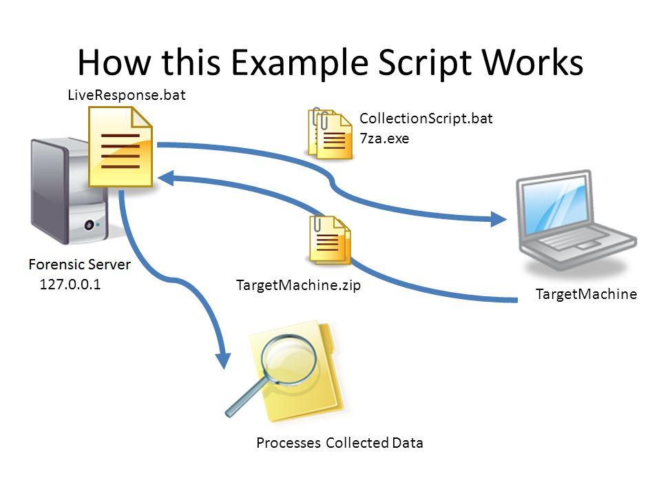 How this Example Script Works