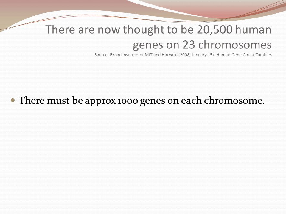 There are now thought to be 20,500 human genes on 23 chromosomes Source: Broad Institute of MIT and Harvard (2008, January 15). Human Gene Count Tumbles
