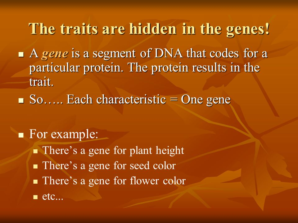 The traits are hidden in the genes!