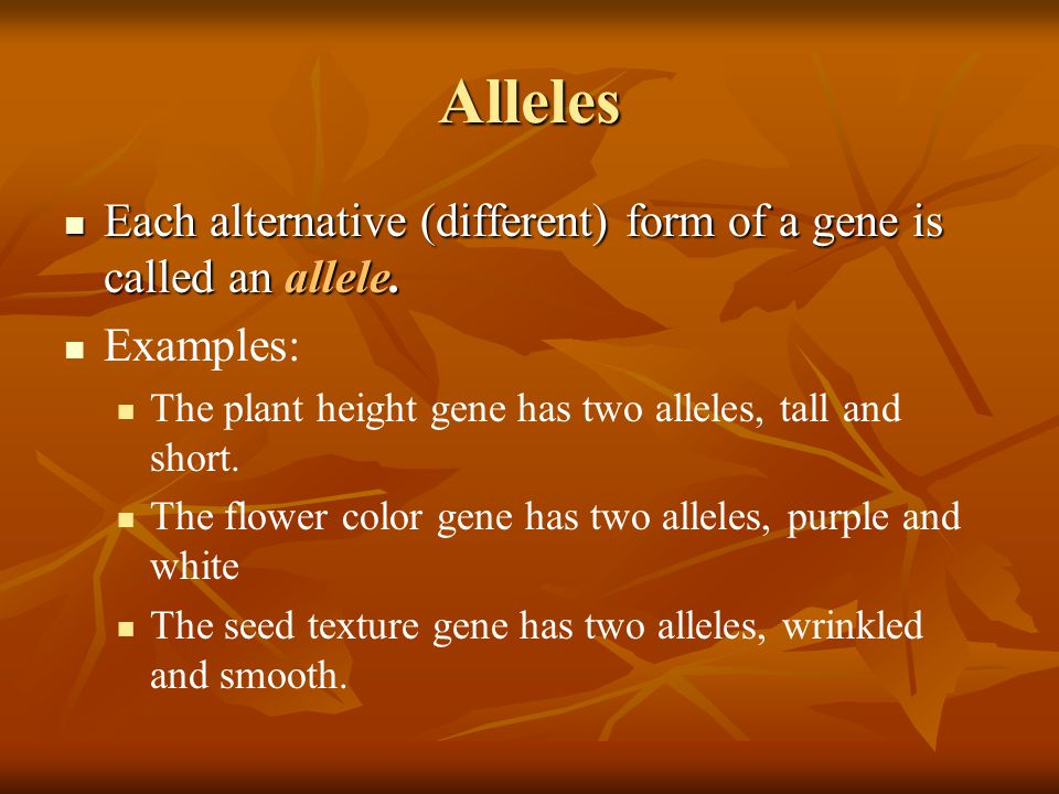 Alleles Each alternative (different) form of a gene is called an allele. Examples: The plant height gene has two alleles, tall and short.