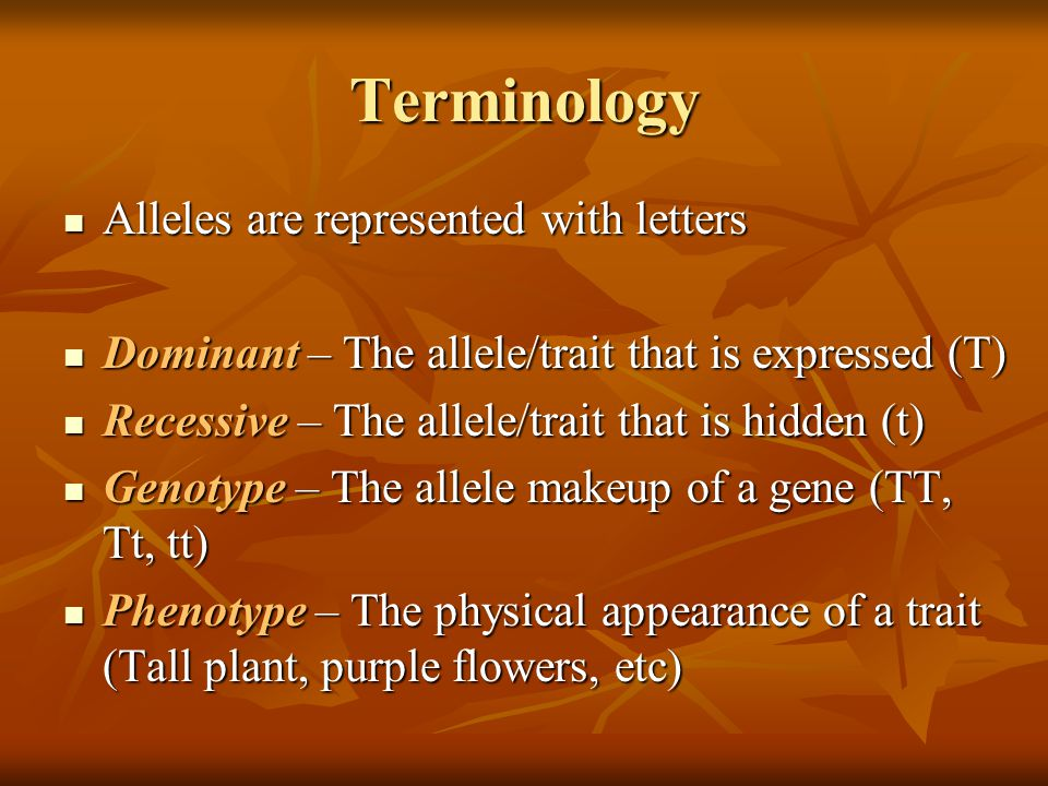 Terminology Alleles are represented with letters