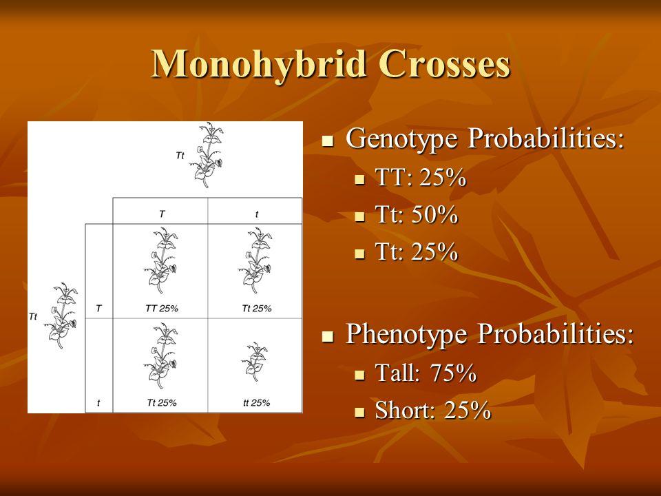 Monohybrid Crosses Genotype Probabilities: Phenotype Probabilities: