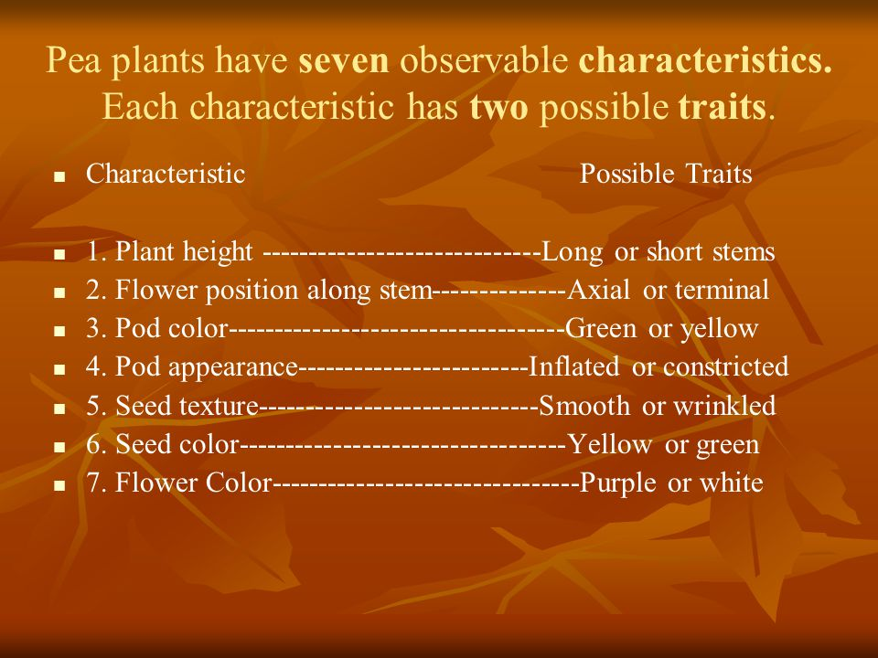Pea plants have seven observable characteristics