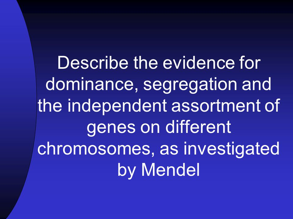 Describe the evidence for dominance, segregation and the independent assortment of genes on different chromosomes, as investigated by Mendel