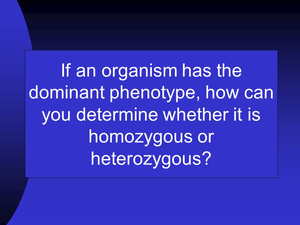 If an organism has the dominant phenotype, how can you determine whether it is homozygous or heterozygous