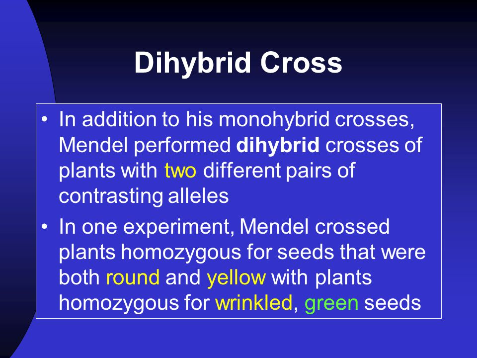 Dihybrid Cross In addition to his monohybrid crosses, Mendel performed dihybrid crosses of plants with two different pairs of contrasting alleles.