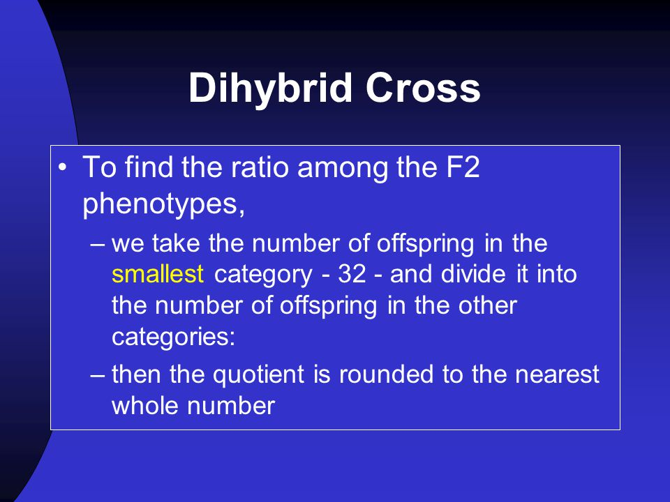 Dihybrid Cross To find the ratio among the F2 phenotypes,