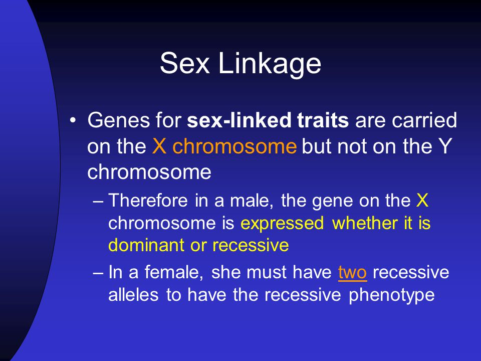 Sex Linkage Genes for sex-linked traits are carried on the X chromosome but not on the Y chromosome.