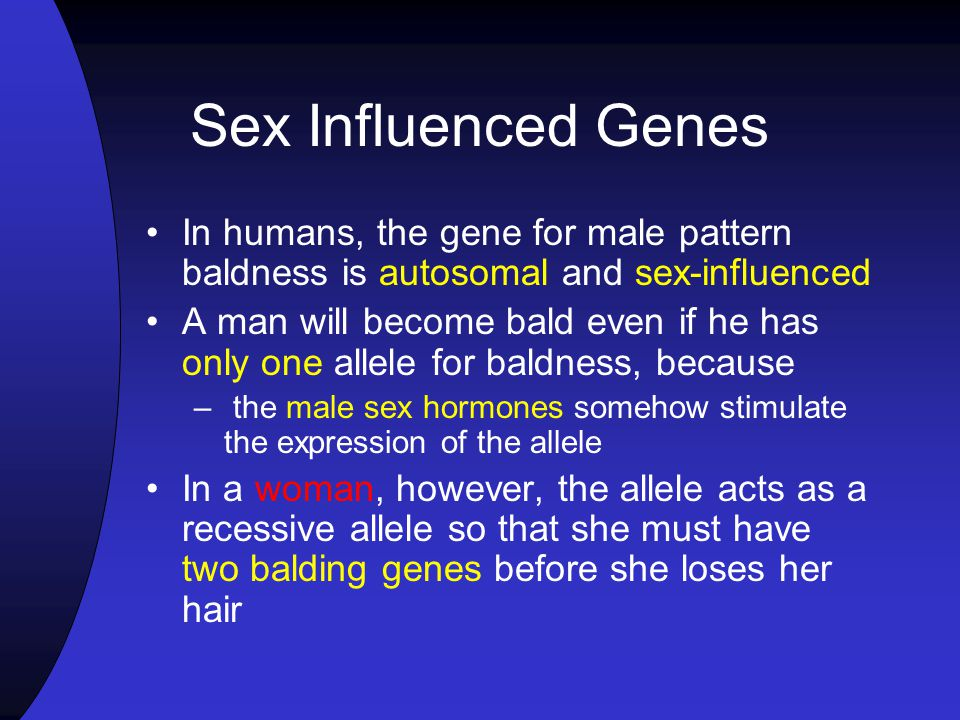 Sex Influenced Genes In humans, the gene for male pattern baldness is autosomal and sex-influenced.