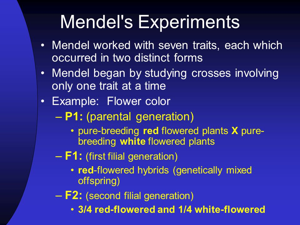 Mendel s Experiments Mendel worked with seven traits, each which occurred in two distinct forms.