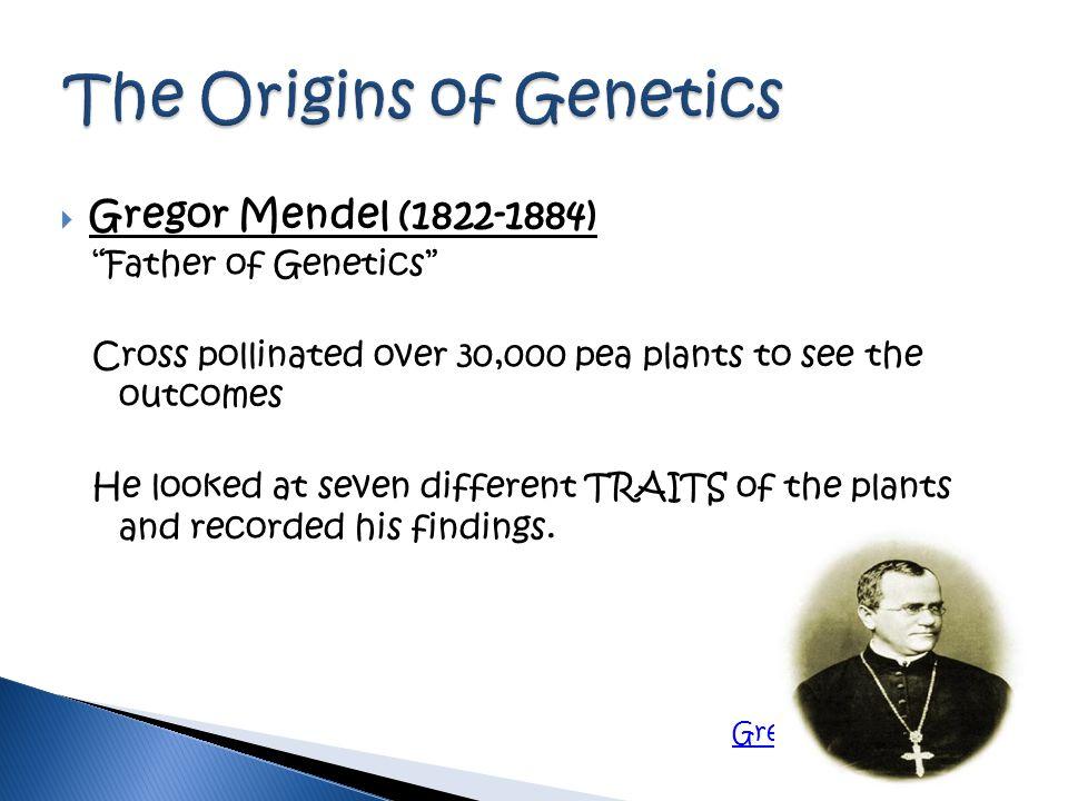 The Origins of Genetics