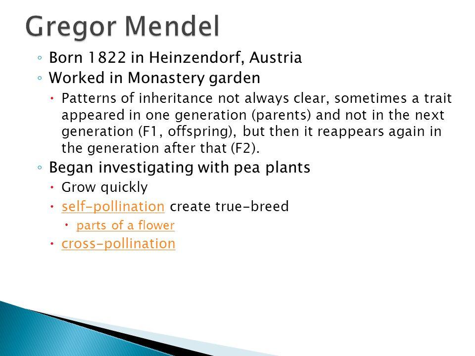 Gregor Mendel Born 1822 in Heinzendorf, Austria