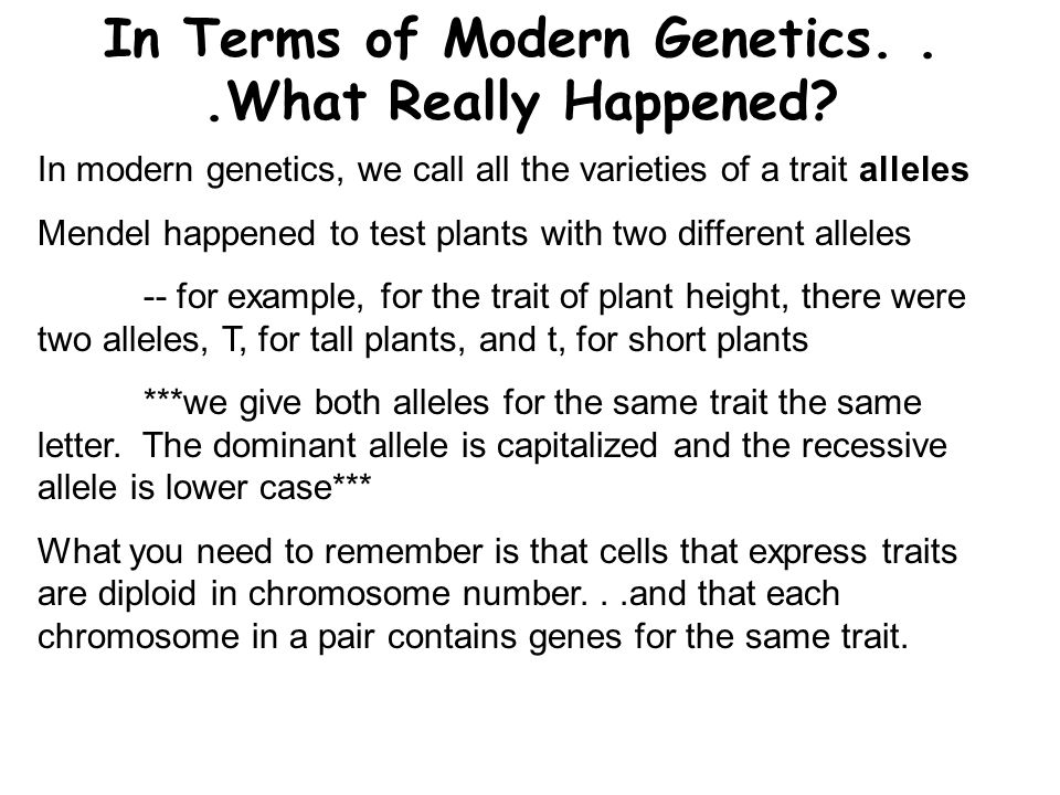 In Terms of Modern Genetics. . .What Really Happened