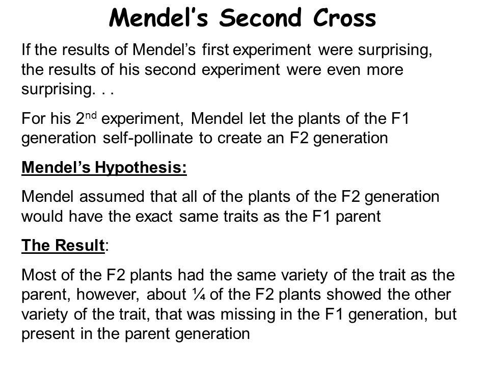 Mendel's Second Cross