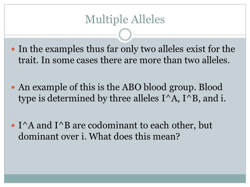 Multiple Alleles In the examples thus far only two alleles exist for the trait. In some cases there are more than two alleles.