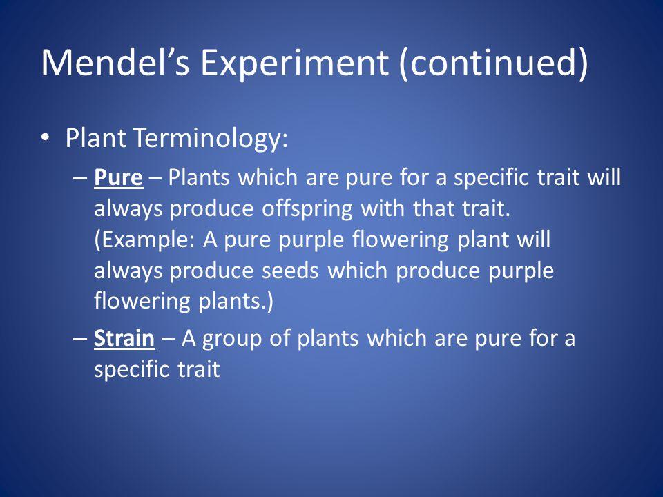 Mendel's Experiment (continued)