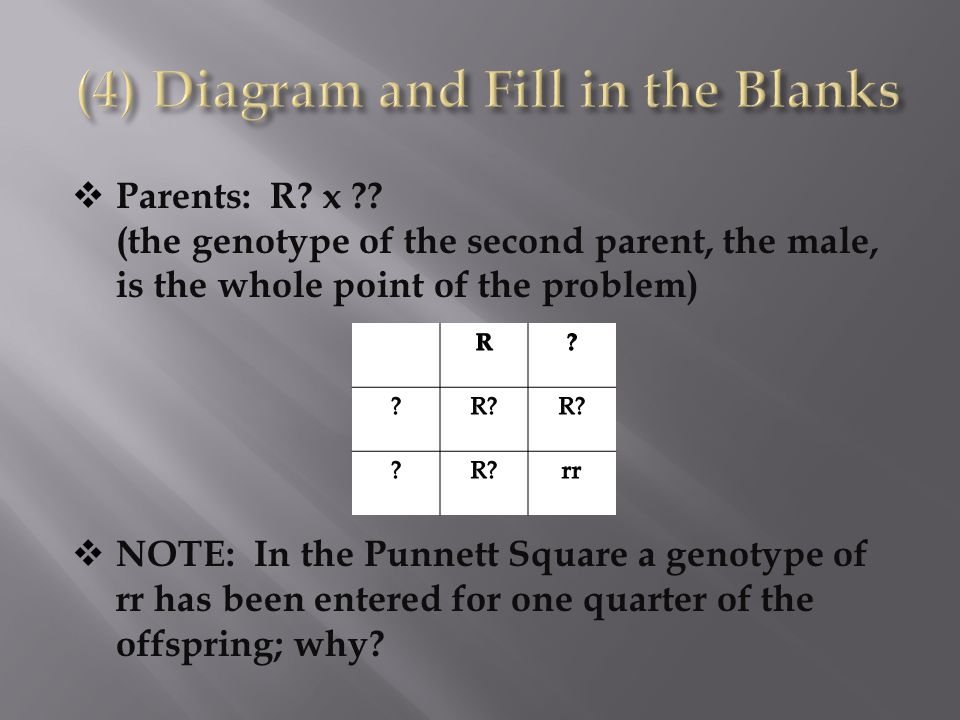 (4) Diagram and Fill in the Blanks
