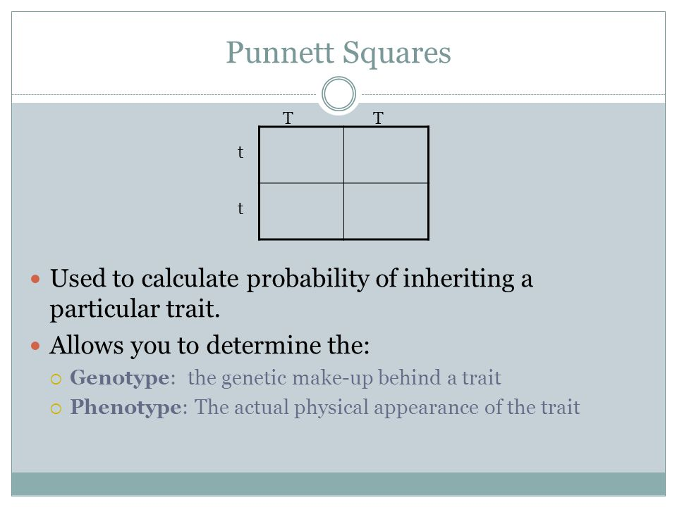 Punnett Squares T. T. Used to calculate probability of inheriting a particular trait. Allows you to determine the: