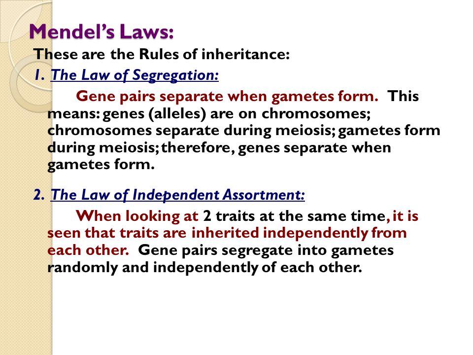 Mendel's Laws: