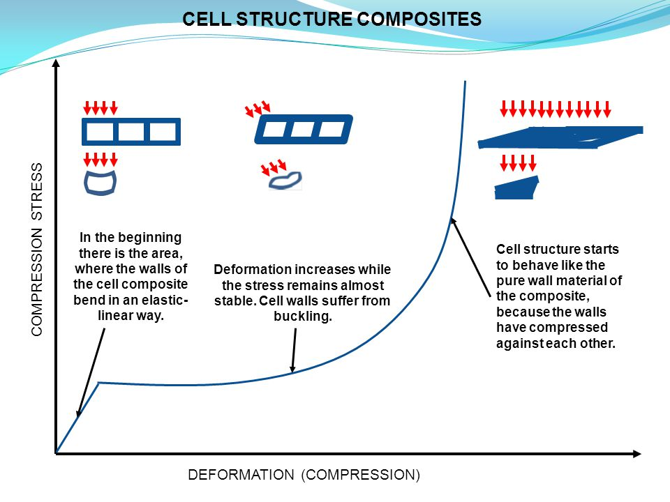 CELL STRUCTURE COMPOSITES