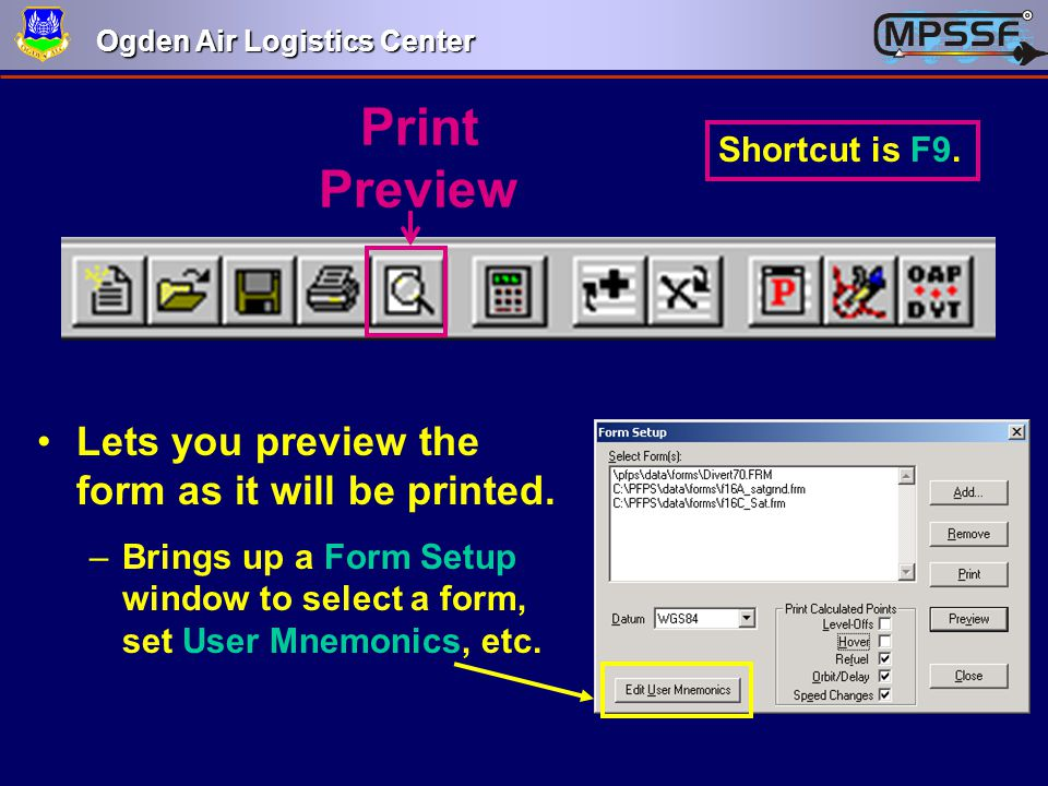 Print Preview Lets you preview the form as it will be printed.