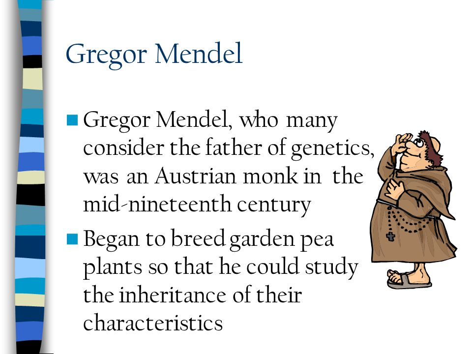 Gregor Mendel Gregor Mendel, who many consider the father of genetics, was an Austrian monk in the mid-nineteenth century.