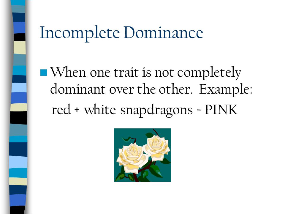 Incomplete Dominance When one trait is not completely dominant over the other.