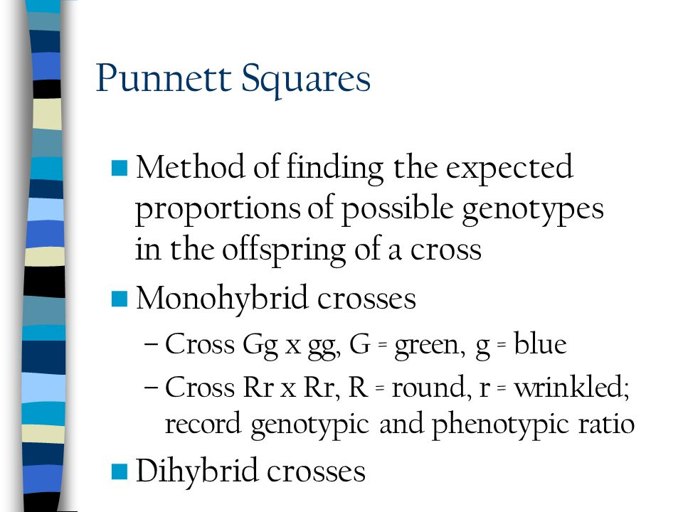 Punnett Squares Method of finding the expected proportions of possible genotypes in the offspring of a cross.