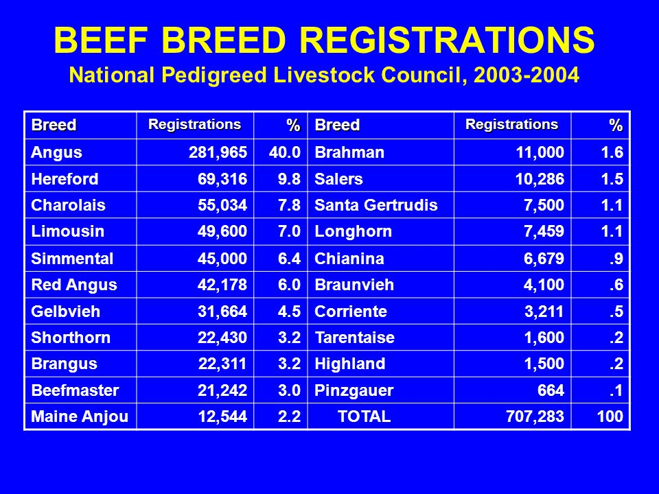 BEEF BREED REGISTRATIONS National Pedigreed Livestock Council, 2003-2004