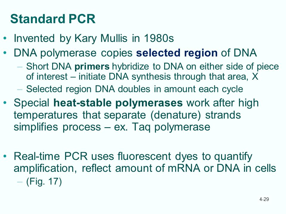 Standard PCR Invented by Kary Mullis in 1980s