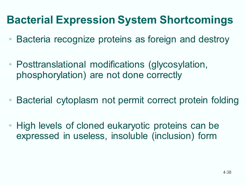 Bacterial Expression System Shortcomings