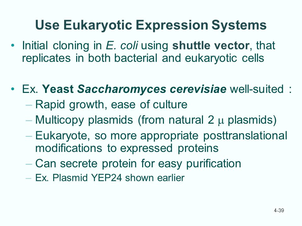Use Eukaryotic Expression Systems