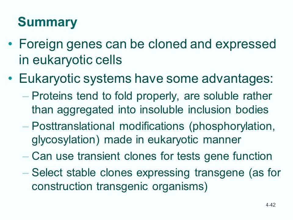 Foreign genes can be cloned and expressed in eukaryotic cells