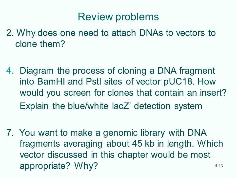 Review problems 2. Why does one need to attach DNAs to vectors to clone them