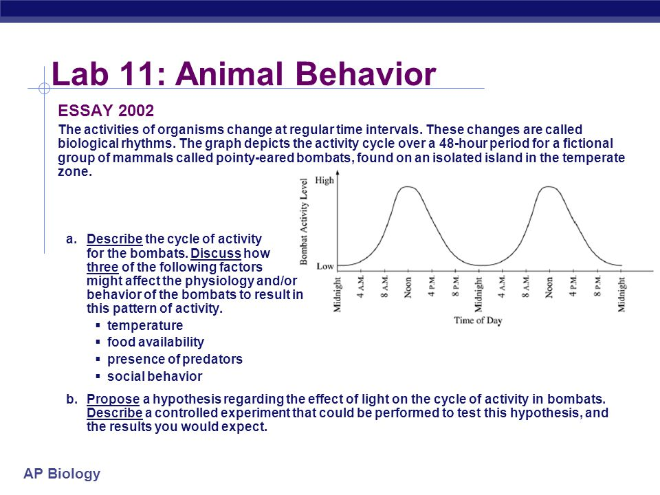 1995 ap biology essay questions Ap® biology 2003 free-response questions answer all questions answers must be in essay form 2003 ap biology free-response questions.