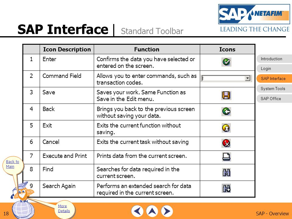 SAP Interface | Standard Toolbar