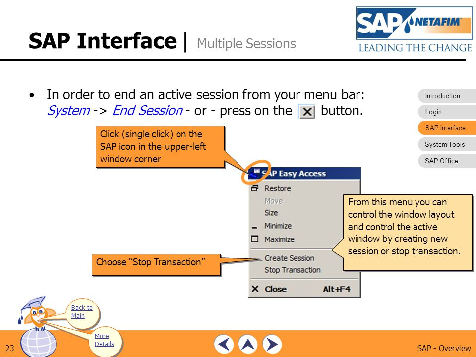 SAP Interface | Multiple Sessions