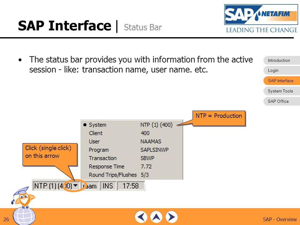 SAP Interface | Status Bar