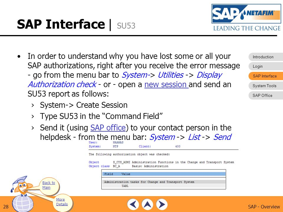 SAP Interface | SU53