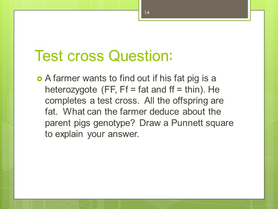 Test cross Question: