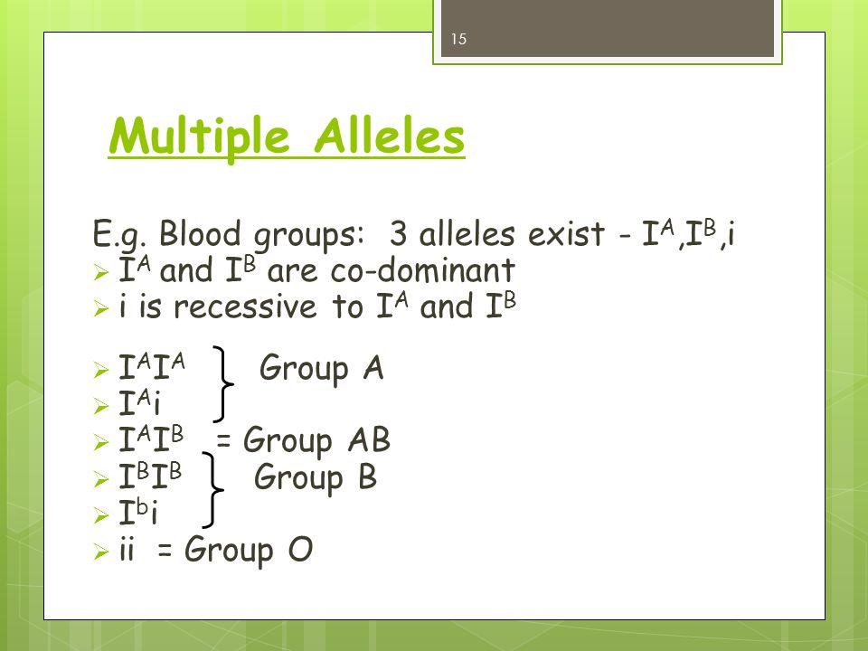 Multiple Alleles E.g. Blood groups: 3 alleles exist - IA,IB,i