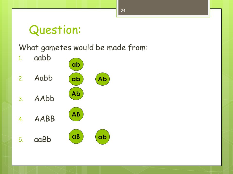 Question: What gametes would be made from: aabb Aabb AAbb AABB aaBb ab