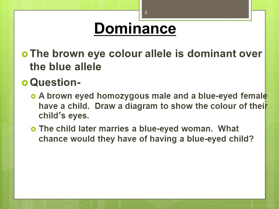 Dominance The brown eye colour allele is dominant over the blue allele