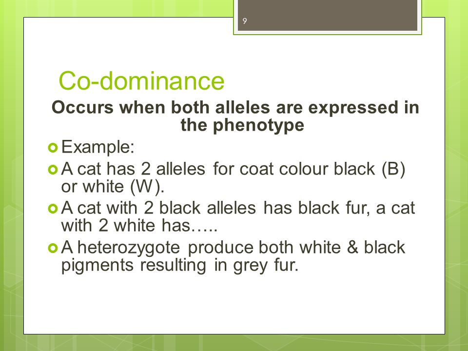 Occurs when both alleles are expressed in the phenotype